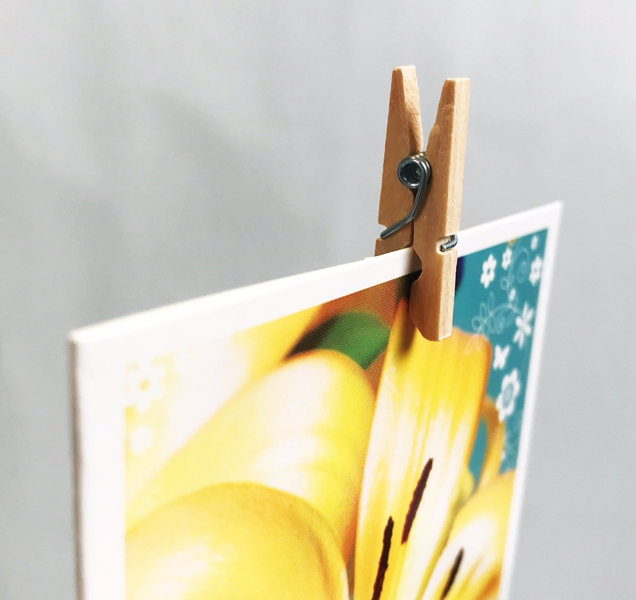 Wooden clothes peg singles display with picture